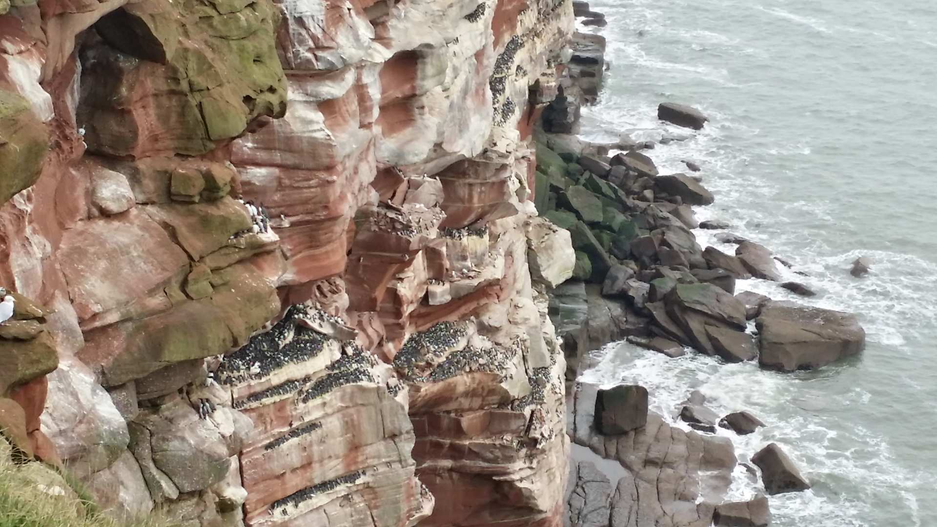 The weatherworn red cliffs at St Bees, Cumbria