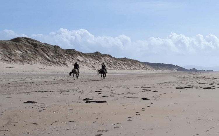 Horses running on one of Anglesey's sandy beaches
