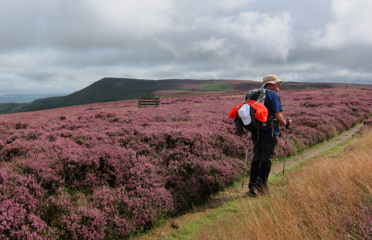 Coast to Coast: North York Moors by Gary Gimbel