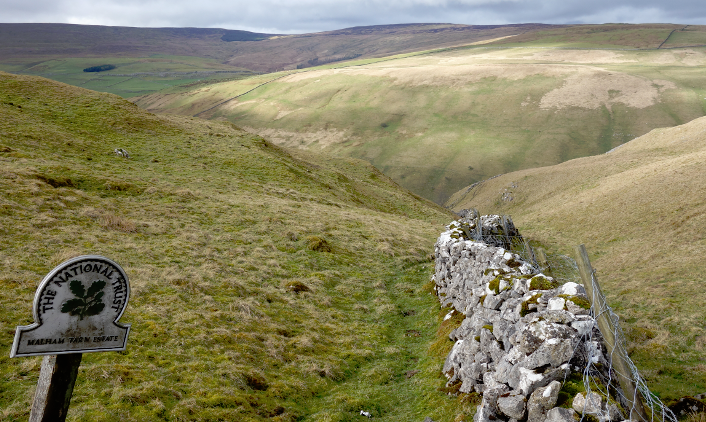 Three Dales Way: Cowside
