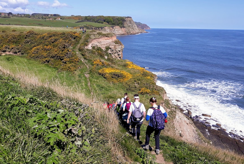 Cleveland Way 50th Anniversary: Contours descend from the cliffs