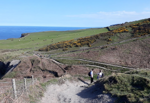 Cleveland Way 50th Anniversary: Contours on the challenge walk