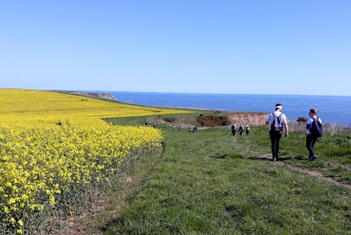 Cleveland Way 50th Anniversary: Yellow Fields
