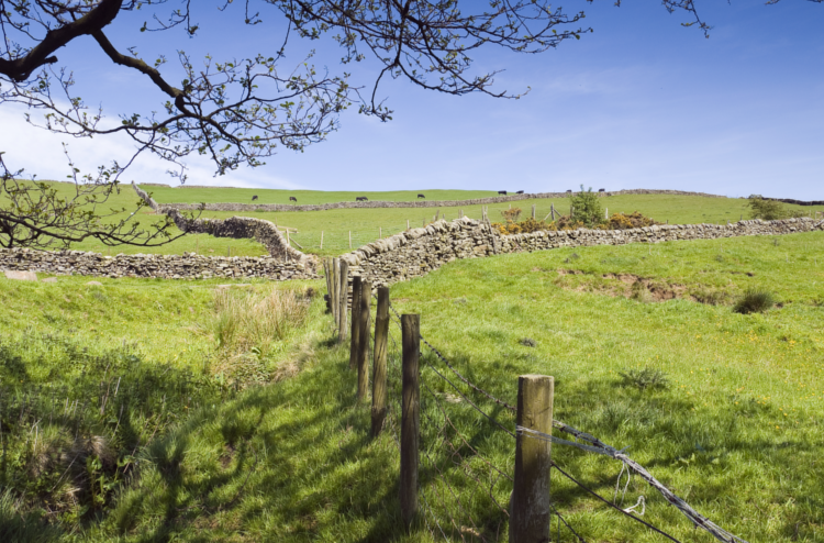 Walking the Nidderdale Way in Yorkshire