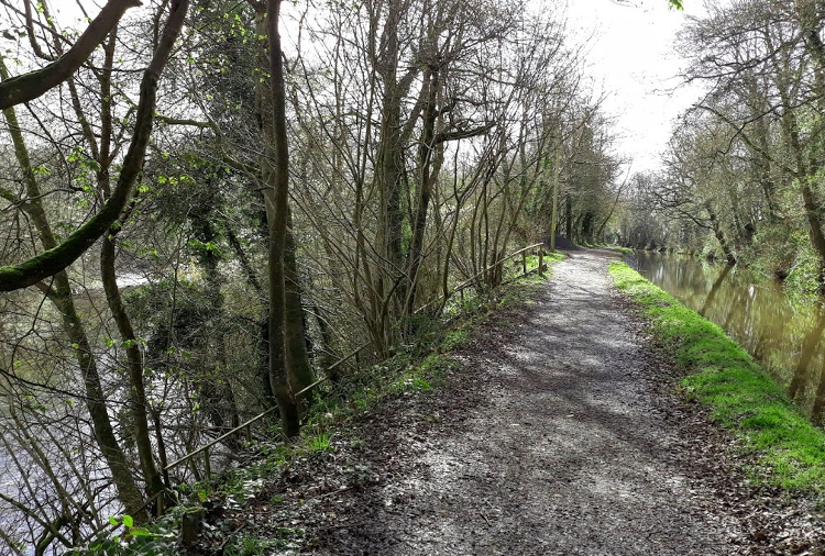 Usk Valley Walk: Between the canal and the river