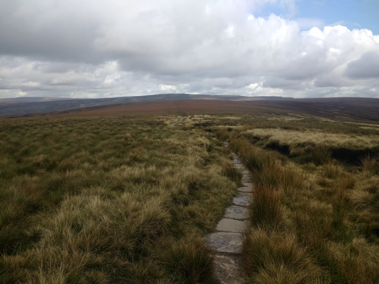 Flagstones lead the way over sodden, grassy terrain.