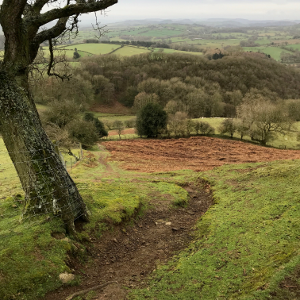 Shropshire Hills Walking Holiday: Ragleth Hill
