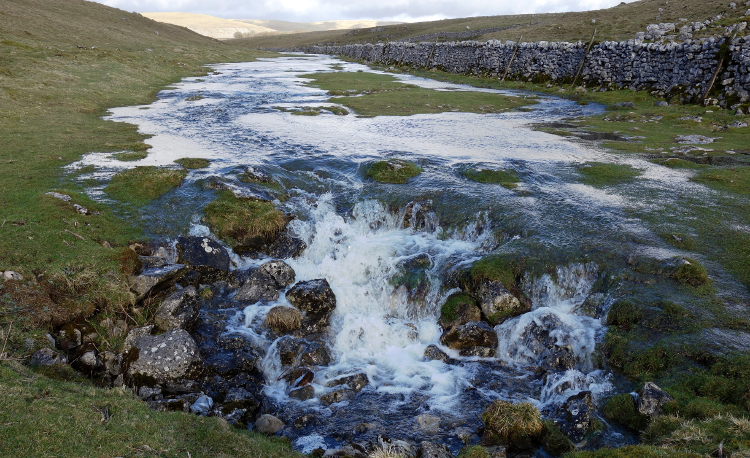 Three Dales Way: Water Sinks