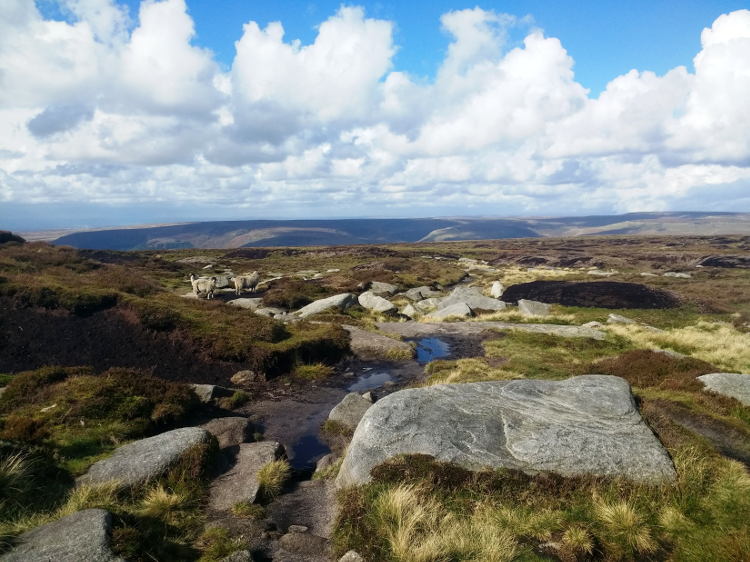 A Short Hike on the Pennine Way