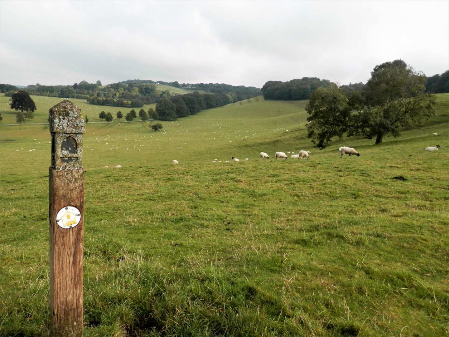 Cotswold Way - North Section