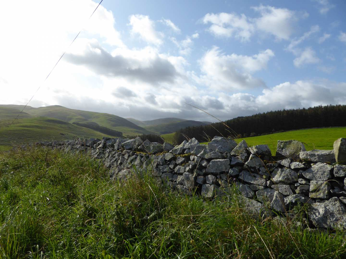 Wall Between Kirk Yetholm and Wooler