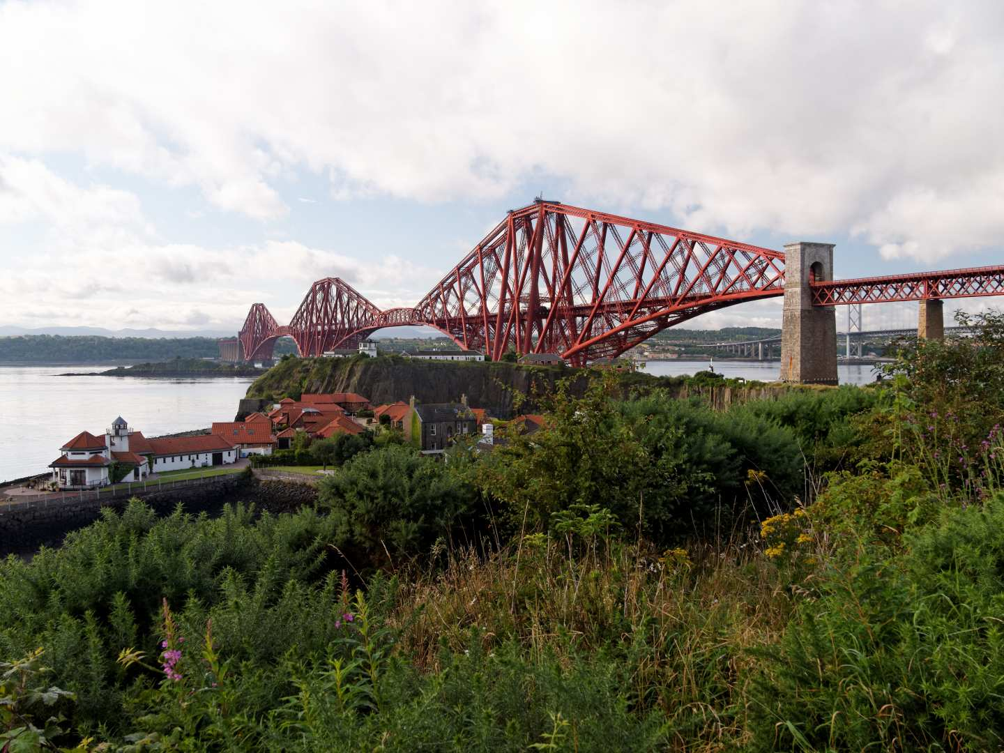 Dog Walking In North Queensferry