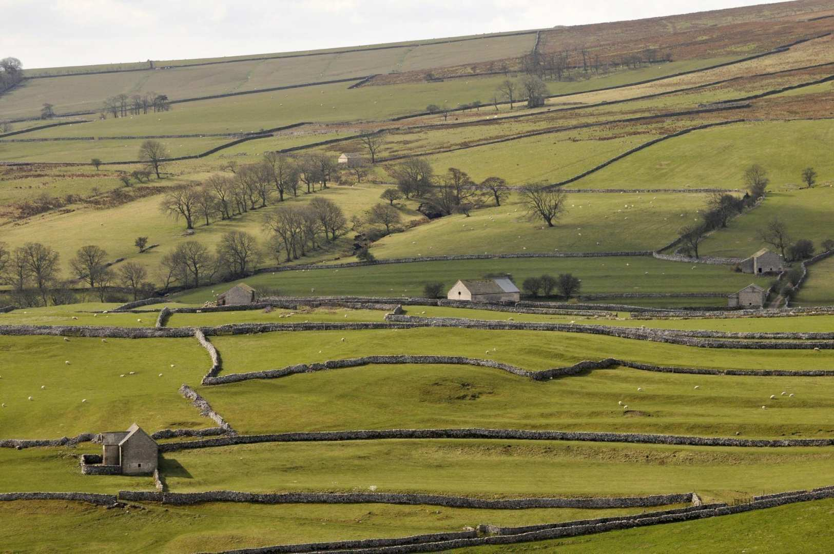 Three Dales Way